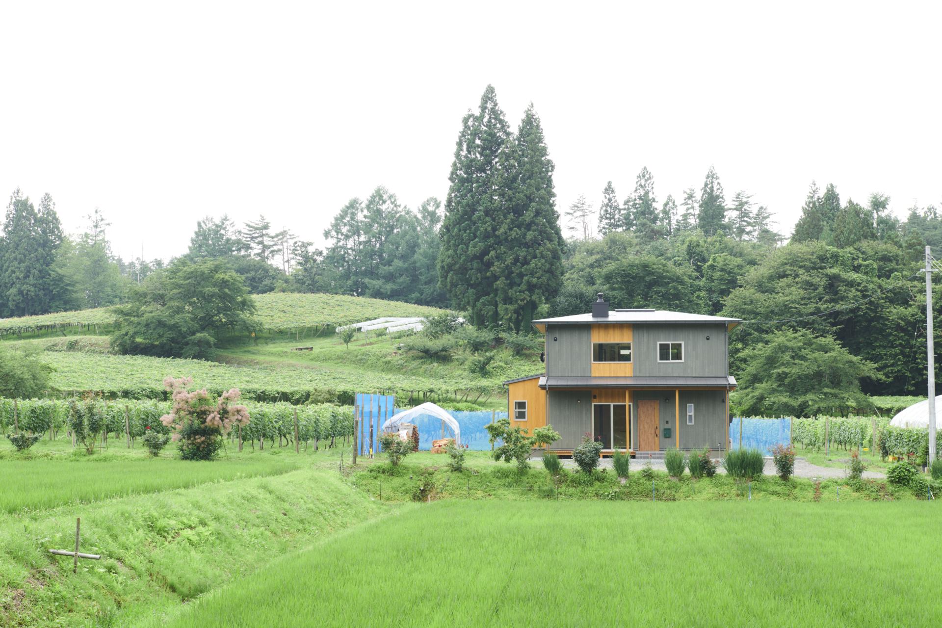庭のあるおしゃれな外観の家